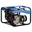 Kintamos elektros srovės generatorius SDMO PERFORM 3000